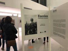 Exposició a la Biblioteca